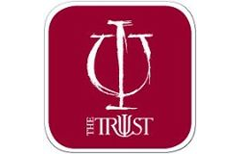 APA Insurance Trust logo